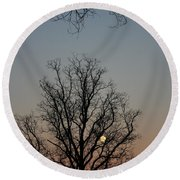 Through The Boughs Portrait Round Beach Towel by Dan Stone