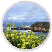 Round Beach Towel featuring the photograph Through Yellow Flowers by Lorraine Devon Wilke