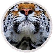 Tiger 1  Round Beach Towel