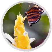Tiger Longwing Round Beach Towel