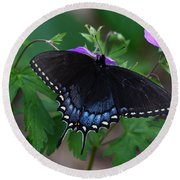 Tiger Swallowtail Female Dark Form On Wild Geranium Round Beach Towel by Daniel Reed