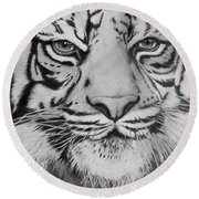 Tiger's Eyes Round Beach Towel