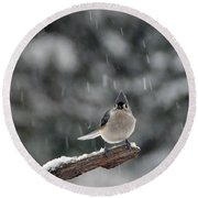 Round Beach Towel featuring the photograph Titmouse Endures Snowstorm by Mike Martin