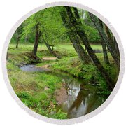 Round Beach Towel featuring the photograph Toms Creek In Early Spring by Kathryn Meyer