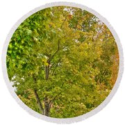 Round Beach Towel featuring the photograph Transition Of Autumn Color by Michael Frank Jr
