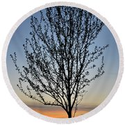Tree At Sunset Round Beach Towel