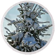 Round Beach Towel featuring the photograph Tree Top by Mark Dodd