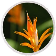 Tropical Orange Heliconia Flower Round Beach Towel