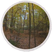 Round Beach Towel featuring the photograph Tryon Park by William Norton