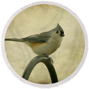 Tufted Titmouse II Round Beach Towel by Sandy Keeton