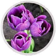 Tulips Queen Of The Night Round Beach Towel