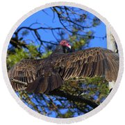 Turkey Vulture With Wings Spread Round Beach Towel