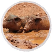 Round Beach Towel featuring the photograph Two Pigs In A Puddle by Nola Lee Kelsey