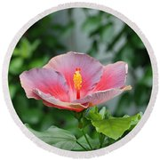 Round Beach Towel featuring the photograph Unusual Flower by Jennifer Ancker
