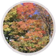 Upj Campus Autumn  Round Beach Towel