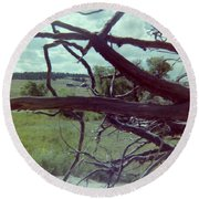 Round Beach Towel featuring the photograph Uprooted by Bonfire Photography