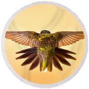 Round Beach Towel featuring the photograph Usaf Hummingbirds Wings by Randall Branham