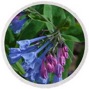 Round Beach Towel featuring the photograph Virginia Bluebells by Daniel Reed