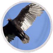 Vulture Round Beach Towel by Jeannette Hunt