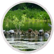 Wakulla Springs Wildlife Round Beach Towel