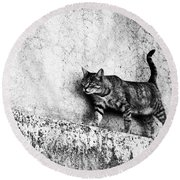 Round Beach Towel featuring the photograph Walking On The Wall by Laura Melis