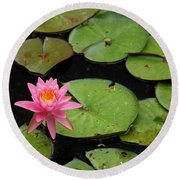 Round Beach Towel featuring the photograph Water Lily by Kay Lovingood