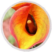 Wavy Pink Yellow Calla Macro Round Beach Towel