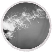 Round Beach Towel featuring the photograph Weed In The Wind by Deniece Platt
