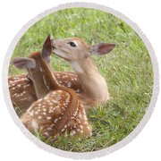 Whispering Fawns Round Beach Towel by Jeannette Hunt