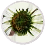 White Coneflower Daisy Round Beach Towel