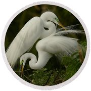 Round Beach Towel featuring the photograph White Egrets Working Together by Myrna Bradshaw