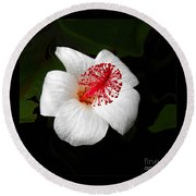 Round Beach Towel featuring the photograph White Hibiscus Flower by Rebecca Margraf