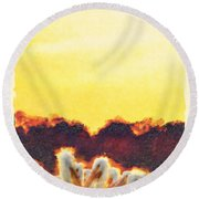 Round Beach Towel featuring the photograph White Pelicans In Sun by Dan Friend