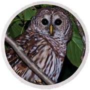 Who Are You 2 Round Beach Towel by Cheryl Baxter