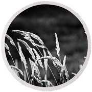 Wild Grass Round Beach Towel
