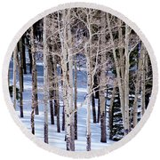 Winter Aspens Round Beach Towel by Colleen Coccia