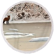Winter Fox Round Beach Towel