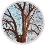 Round Beach Towel featuring the photograph Winter Light by Chalet Roome-Rigdon