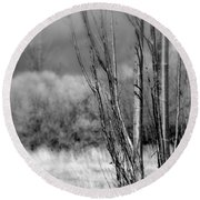 Round Beach Towel featuring the photograph Winters Branch by Kathleen Grace