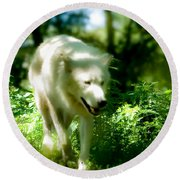 Wolf In The Forest Round Beach Towel