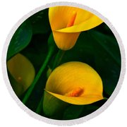 Yellow Calla Lilies Round Beach Towel by Byron Varvarigos