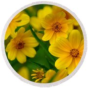 Round Beach Towel featuring the photograph Yellow Flowers by Marty Koch