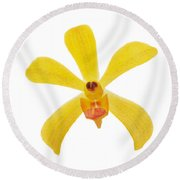 Round Beach Towel featuring the photograph Yellow Orchid by Atiketta Sangasaeng