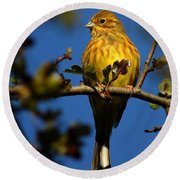 Yellowhammer Round Beach Towel