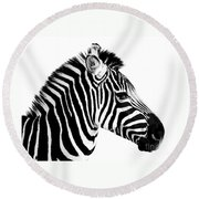 Round Beach Towel featuring the photograph Zebra by Rebecca Margraf