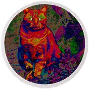 Zombie Cat Round Beach Towel