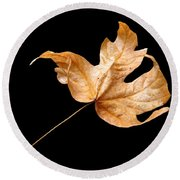 Round Beach Towel featuring the photograph . . Autumn Dance. . by I'ina Van Lawick