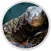 A Crocodile Monitor Portrait Round Beach Towel by Lana Trussell