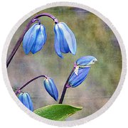 Bluebells And Beyond Round Beach Towel