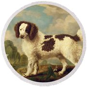 Brown And White Norfolk Or Water Spaniel Round Beach Towel